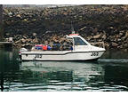 ZEUS FABER - CHEETAH CAT boat for sale