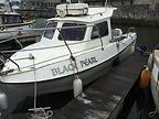 AQUAFISH 23  - AQUAFISH boat for sale