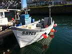ROCKHOPPER - SEAL ISLANDER boat for sale