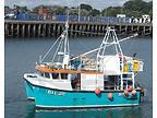 WENDY PATRICIA BH22 - GEMINI G10 CATAMARAN boat for sale