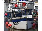 GEMINI - TAMAR 2000 boat for sale