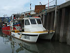 MAYFLOWER - CHEETAH CATAMARAN boat for sale