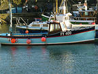 MAKO - CURTIS&PAPE boat for sale