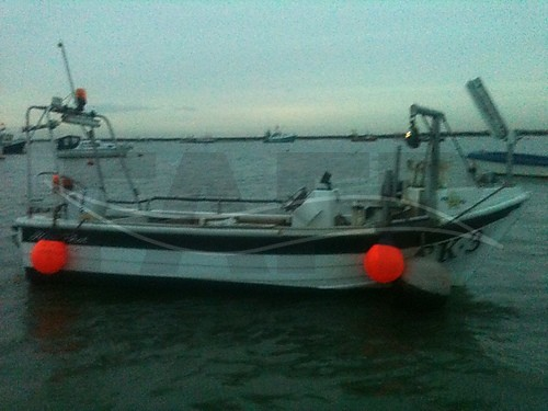 Link to picture 1 for PRO ANGLER 17 fishing boat for sale