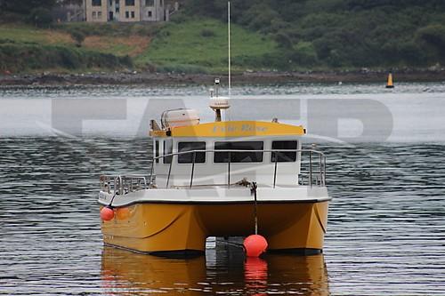 Pr boat cougar catamaran 8m boat for Catamaran fishing boats for sale