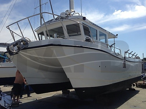 Link to picture 1 for cougar cat 10m mk2 10m boat for sale