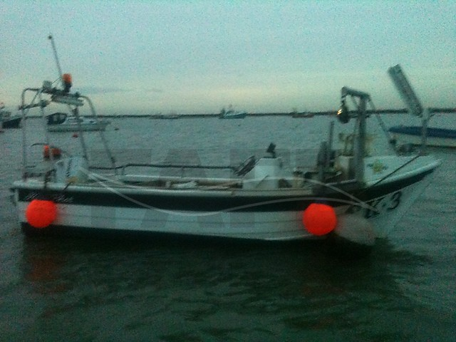 Picture of PRO ANGLER 17 fishing boat for sale