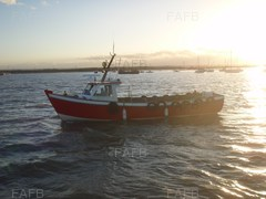 Dover Sea Angler
