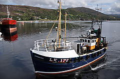 ARNBORG LK172, WOODEN TRAWLER boat for sale