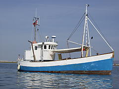REX, WOODEN CONVERTED TRAWLER boat for sale