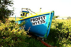 PROFIT, GRP boat for sale