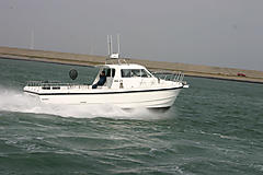 WHITE EAGLE, CHEETAH CATAMARAN GRP boat for sale