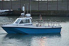 PEGASUS, OFFSHORE 25 boat for sale
