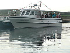 CYGNUS CYFISH 31-39, CYGNUS boat for sale