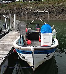 CHRISTINE, PRO,ANGLER ELEPHANT M boat for sale
