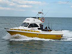 GREY FOX, EVOLUTION 38I EVOLUTIO... boat for sale