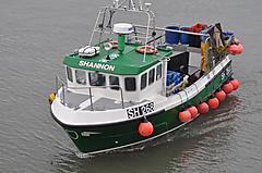 SHANNON, CYGNUS CYFISH 33 CYFIS... boat for sale