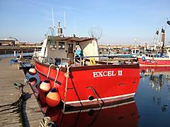 EXCEL 2, CYGNUS CYFISH CY 33 boat for sale