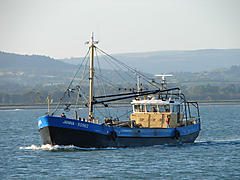 JANNA SO962, MUSSEL DREDGER boat for sale