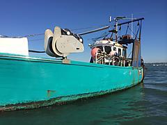 JORJA LOUISE , WOODEN POTTER/NETTER boat for sale