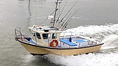 LADY LEWIS, OFFSHORE 27 boat for sale