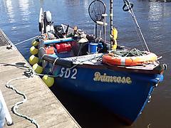 PRIMROSE, TRIDENT COBLE boat for sale