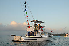 TEGA LTD, AQUA BELL 33 MED boat for sale