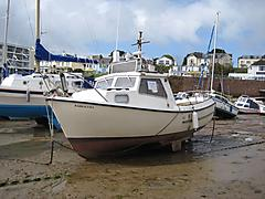 BARRACUDA, TRUSTY 21 boat for sale