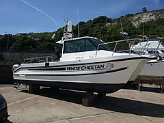 WHITE CHEETAH, CHEETAH 7.9 boat for sale