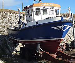 DEEP COVE, NAPIER29 FAST FISHMAN boat for sale