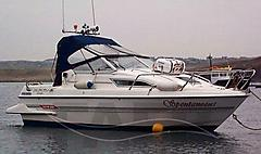 SPONTANEOUS, SEALINE 190 ATTACHE boat for sale