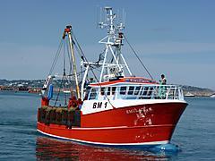 EMULATE BM1, BUILT BY PARKOL boat for sale