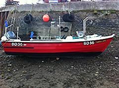 SOPHIE JANE, ORKNEY FASTLINER 19' COMM boat for sale