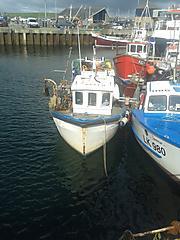 LOYAL FRIEND, TAMAR 24 boat for sale