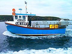 BOY FRAZER, HALFISH 24 boat for sale