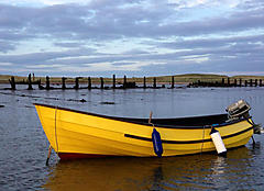 UNNAMED, TRIDENT COBLE boat for sale