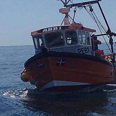 ABBI, IROKO ON OAK boat for sale