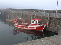 STARINA, IP 24 boat for sale