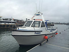 PREDATOR, LOCHIN 33 COMMERCIAL boat for sale