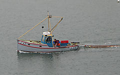 ODDJOB, WOODEN TRAWLER NETTER  boat for sale