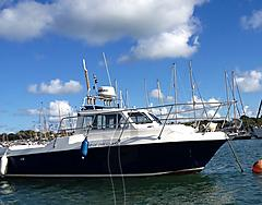 TOP OF THE CLASS, MITCHELL 23 FF700 boat for sale
