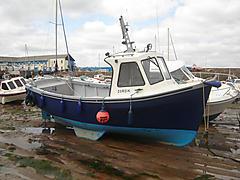 ZORDIK, TREEVE 20 boat for sale