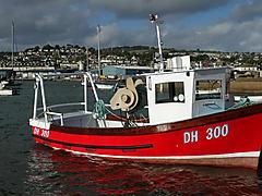 JODIE ANN, CYGNUS 21 boat for sale