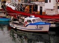 LK980 Janmar