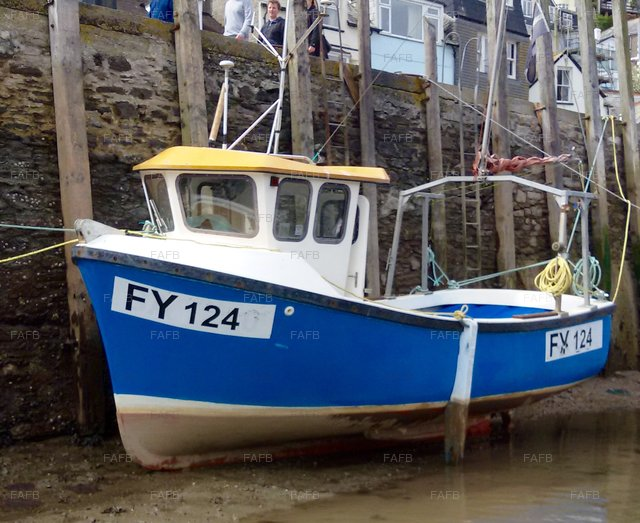 Kingfisher 20 - picture 1