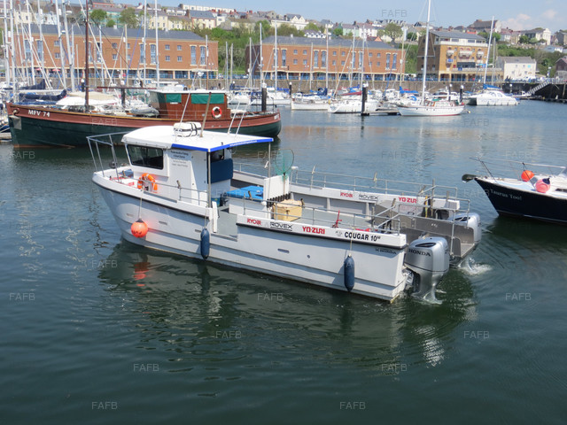 Cougar Catamaran 10m Outboard. - picture 1