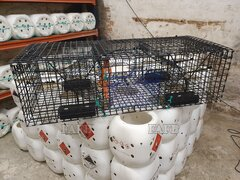 aquamesh creels, store pots and fish traps - ID:89795
