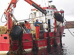steel fishfarm workboat - Venture - ID:57108