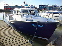 newhaven sea warrior 27 - sea owl - ID:66359