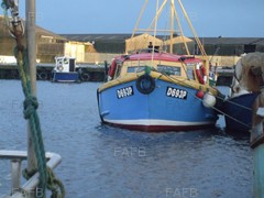 berry boat - aquarius of newquay - ID:77070